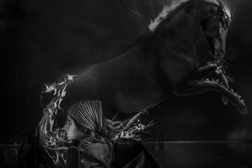 Foto de 'Back to Silence', de Sandra Pereznieto (14/14)