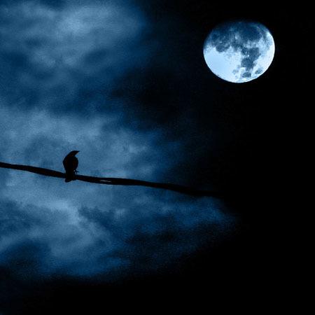 Imágenes de luna llena para inspirarse