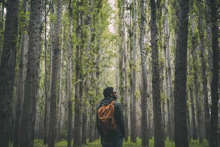 Ofertas de Amazon en abrigos y sudaderas Geographical Norway que llegan a tiempo para Reyes
