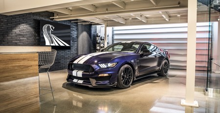 Shelby Mustang Gt350 2019 11