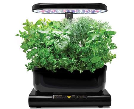 Kit De Cultivo Interior Smart Garden 6 Capsulas