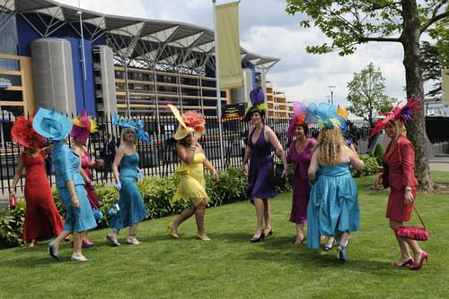 Foto de Ascot 2008: imágenes de sombreros, tocados y pamelas (19/20)