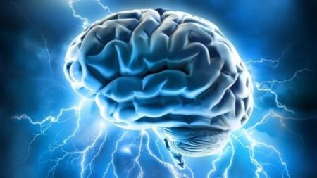 Tres alimentos para un cerebro saludable