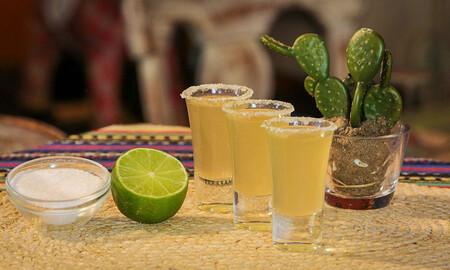 Este mayo llega el Pulque fest 2021 a la Ciudad de México
