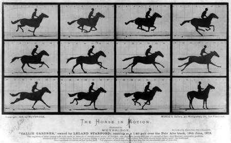 Un ejemplo del fenómeno Phi: estáticas de un caballo que al verlas rápidamente da la ilusión de movimiento.