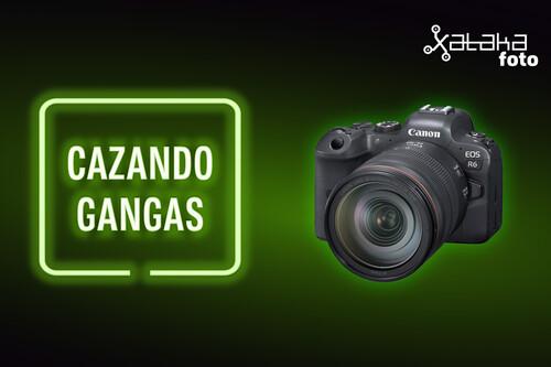 Canon EOS R6, Nikon Z50, POCO X3 Pro y más cámaras, móviles, ópticas y accesorios en oferta en el Cazando Gangas
