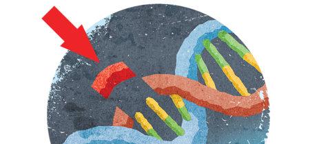 El primer gran experimento genómico en seres humanos acaba de aprobarse en EEUU