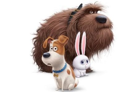 Las mascotas protagonizarán lo nuevo del equipo de la saga 'Gru, mi villano favorito'