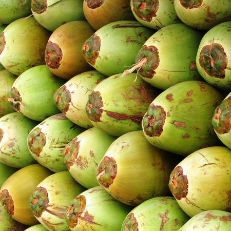 Coconuts 331258 1920