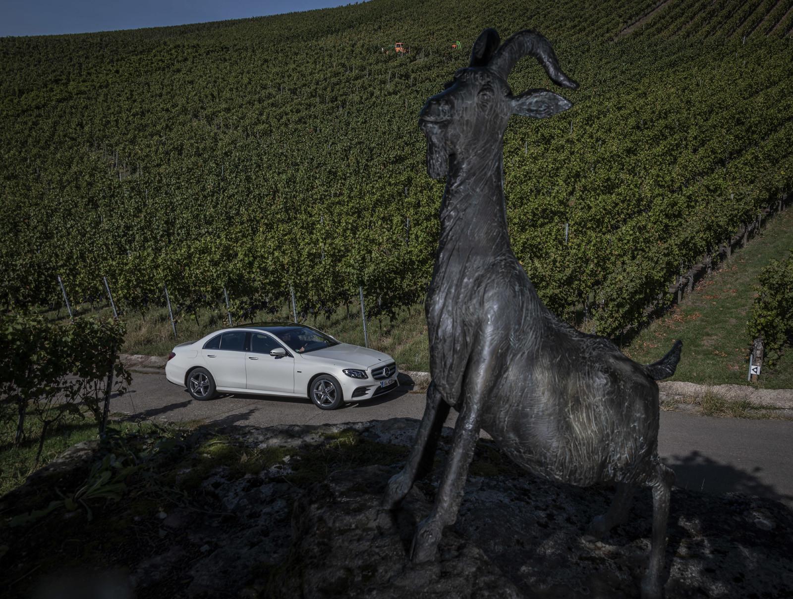Foto de Mercedes-Benz E 300 de (presentación) (34/47)