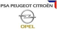 GM y PSA fabricarán modelos conjuntos en Figueruelas