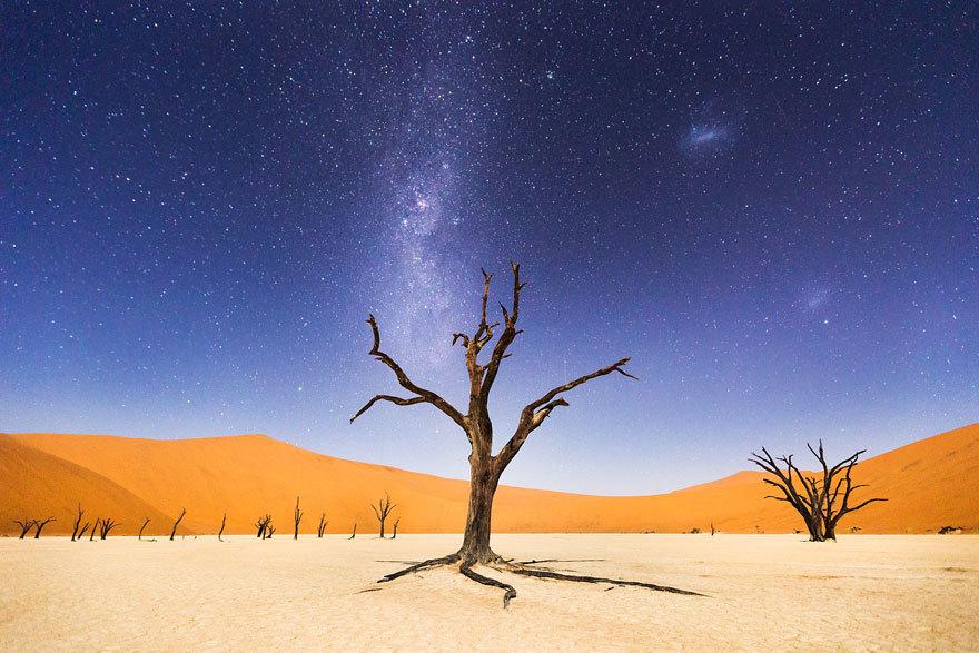 Foto de Concurso de fotografía National Geographic (3/10)