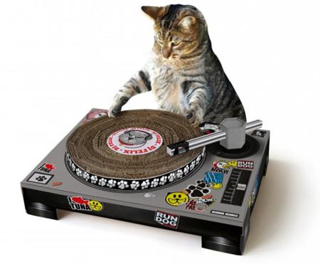 Convierte a tu gato en un DJ con Cat Scratch DJ