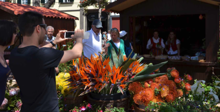 Festa Da Flor 6