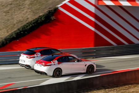 Alfa Romeo Stelvio y Giulia Racing Edition