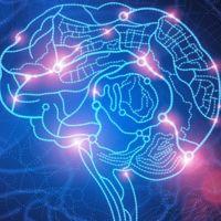 Convertir el lenguaje neuronal a código binario: el objetivo del nuevo proyecto de DARPA