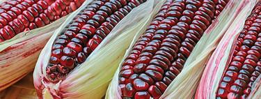 Bonito Tianguis: un proyecto mexicano que da rostro a nuestros alimentos del campo