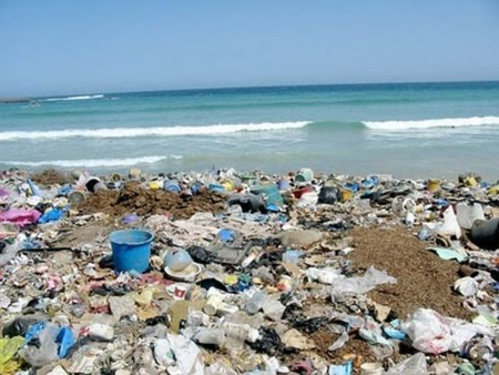 ¿Qué basura es más probable que encuentres en la playa?