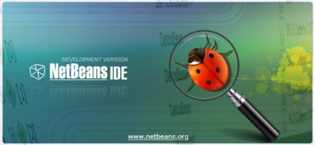 Netbeans: formatear variables para el debugger