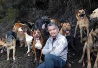 El encantador de perros, al rescate de las tardes de Cuatro
