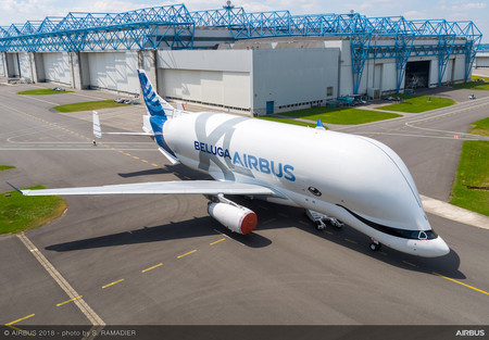 Belugaxl Firstflight 10