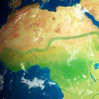"""Íbamos a construir un """"muro verde"""" de 8.000 kilómetros de largo y 15 de ancho: qué fue del gran proyecto para reforestar África"""