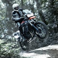 Foto 13 de 37 de la galería triumph-tiger-800-primera-galeria-completa-del-modelo en Motorpasion Moto