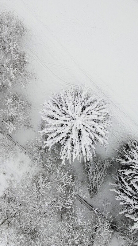 Skypixel 6th Anniversary Contest People S Choice Prize Snowy Winter