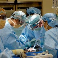 El COVID hizo que muchas enfermedades casi desaparecieran de los hospitales, el problema es que muchas de ellas ahora están de vuelta