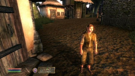 Morroblivion Cool Graphics 2