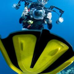 Foto 28 de 34 de la galería underwater-competition en Xataka Foto
