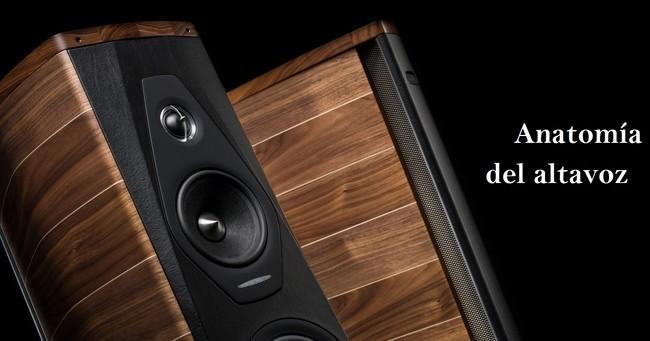 Anatomía altavoz: Factores influyen en la calidad del sonido - E ...