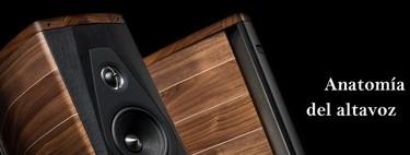 Anatomía del altavoz: Factores que influyen en la calidad del sonido