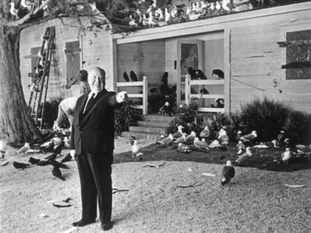 'Los pájaros', el remake producido por Michael Bay tiene ya director