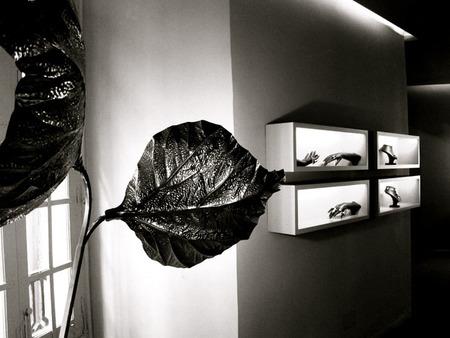 Deco hojas showroom