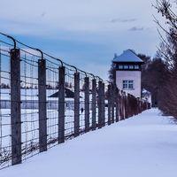 El ansia de comida infantil de los prisioneros de guerra