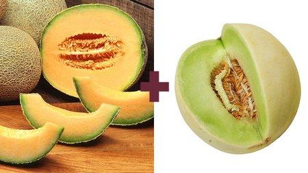 melon galia - cruce