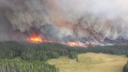 Yellowstone Fire