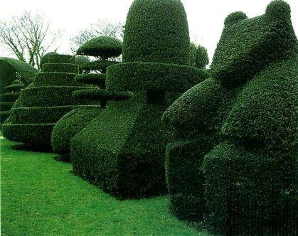 Poda ornamental en exterior