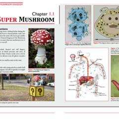 Foto 3 de 7 de la galería the-science-of-the-mushroom-kingdom en Vida Extra