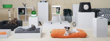 Tu mascota se lo merece todo (y más), y la nueva colección de Ikea se convertirá en tu próxima obsesión