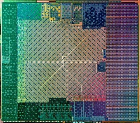 AMD Fusion die