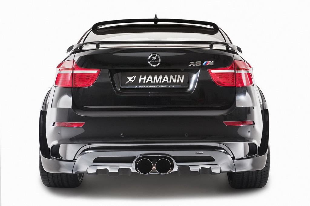 Foto de Hamann BMW X6 Tycoon EVO M (6/19)