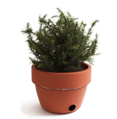 Una maceta para cada planta