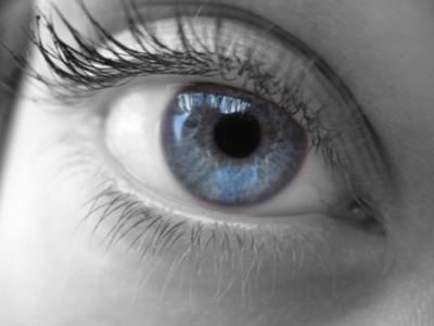 Alimenta la salud de tus ojos