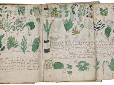 El 'Códice Voynich' será clonado en España