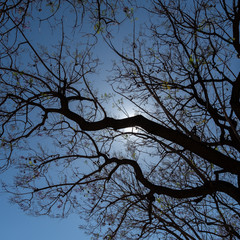 Foto 4 de 16 de la galería fujifilm-x-h1 en Xataka Foto