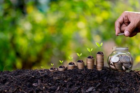 Los mejores fondos para invertir indexado en España: plataformas, comisiones y carteras recomendadas