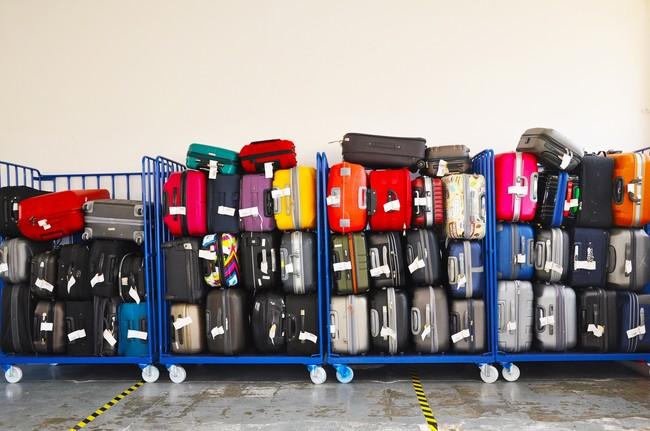 Peores Conpaneros De Viaje