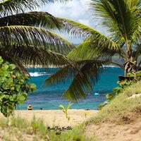 El turismo no es sostenible y el 10 % del efecto invernadero se atribuye a él